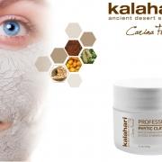 Månadens behandling - Phytic Clay Mask